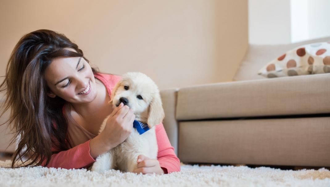 Puliti&Felici - Prendersi cura degli animali domestici