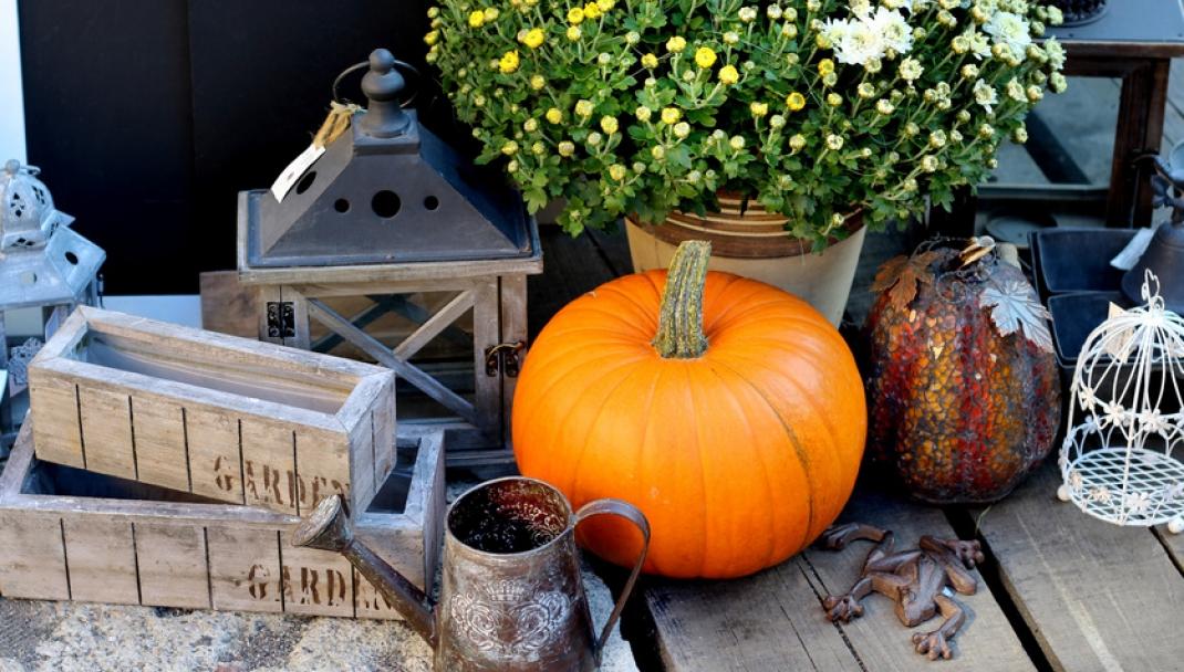 Puliti & Felici - Pulizie di Halloween
