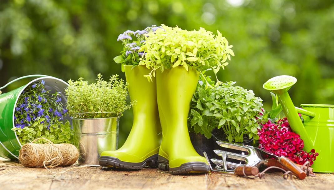 Puliti&Felici - Pulire l'orto e proteggere le piante